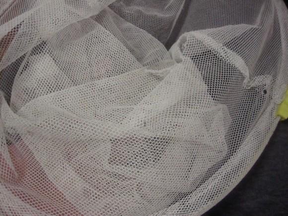 夏場に大活躍する虫取り網(※100円ショップのDAISO)