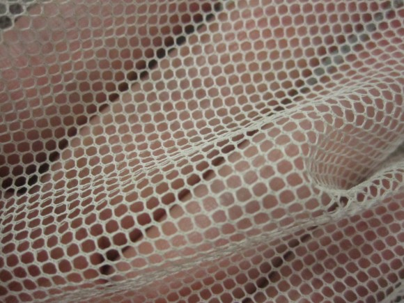網目は1.5mm程度の虫取り網