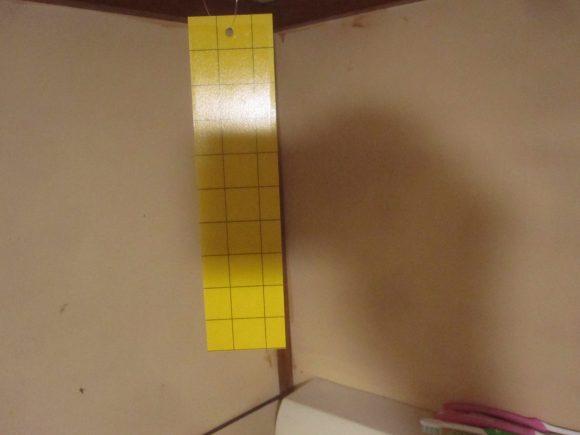 人がよく集る台所の天井にもぶら下げた