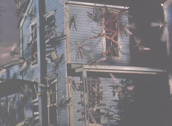 逃げ込んだ家屋に群がる数メートルもの巨大な蚊の大群!