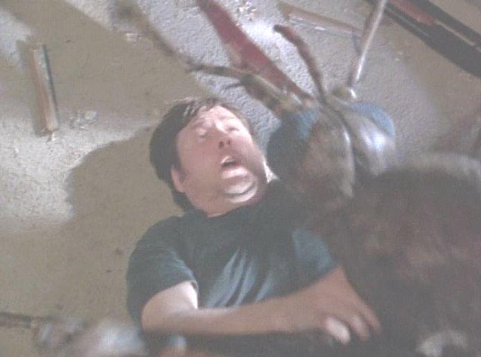 ギャ~!蚊に殺されるぅ~!絶体絶命のピンチ!