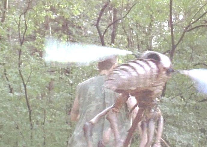 巨大な蚊に追いかけられ悲鳴を上げる男性