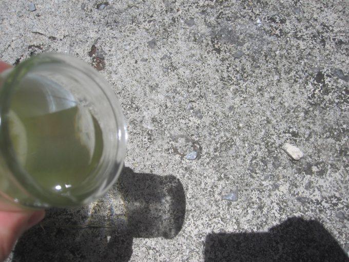 ボウフラが泳いだ蚊取りボトルの水をこぼす瞬間