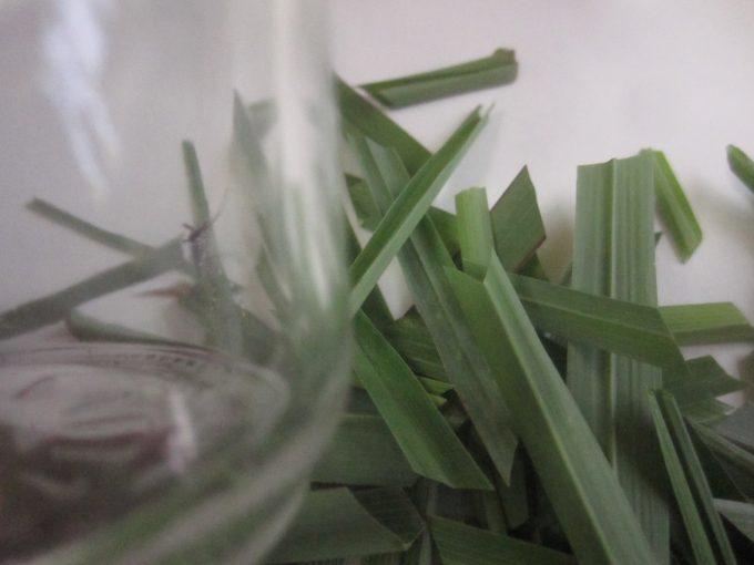 空のガラス瓶容器に刻んだレモングラスの葉を敷き詰める