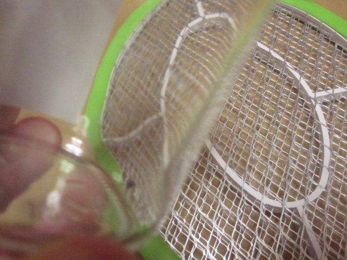 お腹いっぱい血を吸ったヤブ蚊を捕獲して電撃殺虫器に近付ける