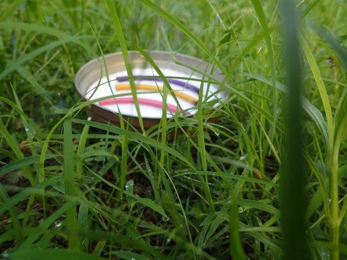 雑草が生い茂る中へ蚊取り線香の皿を置いただけでも絵になる