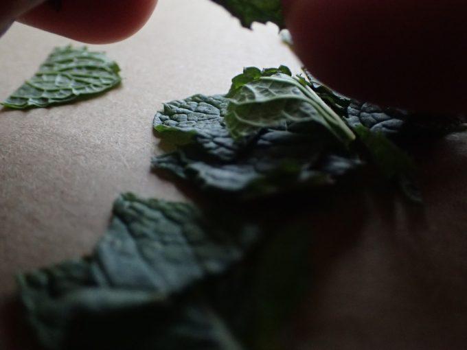 ミントの葉をハサミで細かく切り刻む