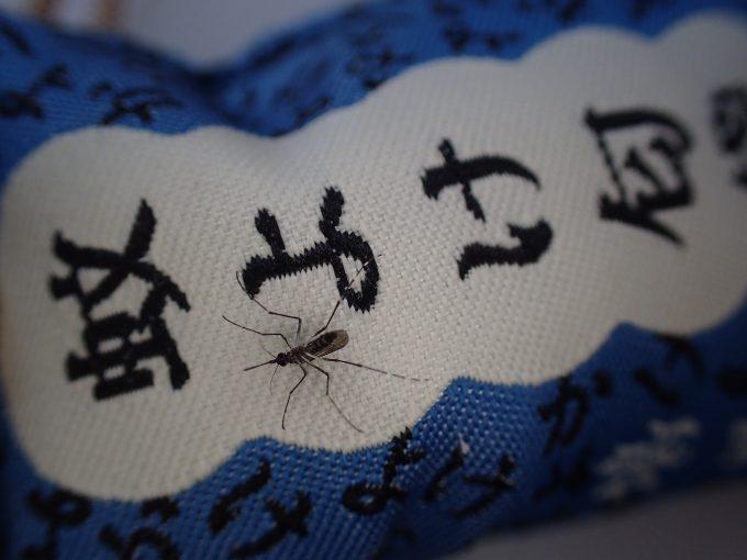 """天然香料の""""蚊よけ匂袋""""は害虫の蚊を弱らせる効果があることが証明された"""