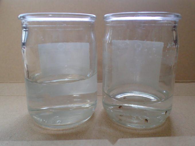 左の容器が海水、右の容器がボウフラが泳ぐ雨水