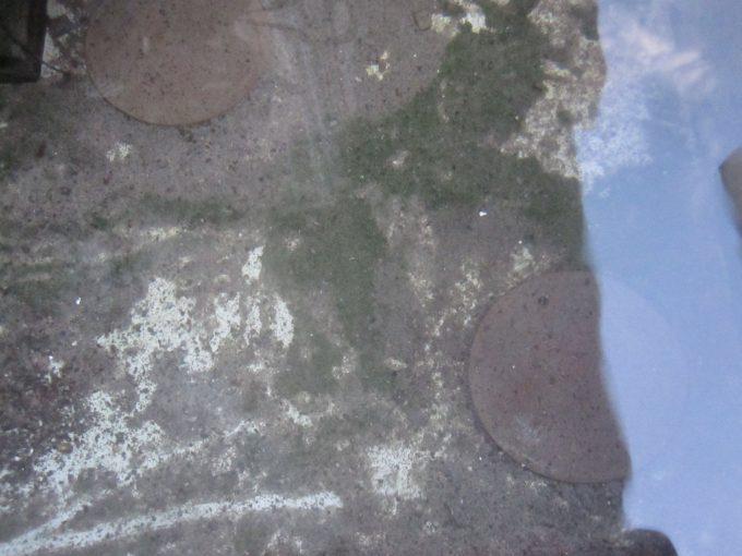 雨水溜め容器の中のボウフラ対策アイテム銅板が汚れている