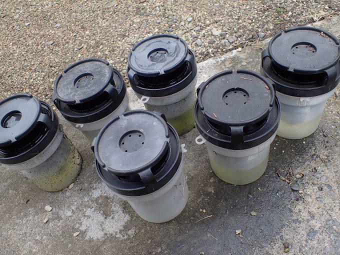 前回の雨水交換から数ヶ月が経過して蒸発したり水位が低くなった蚊とりん容器