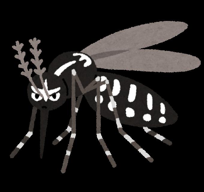 (イラスト屋素材)害虫ヒトスジシマカ