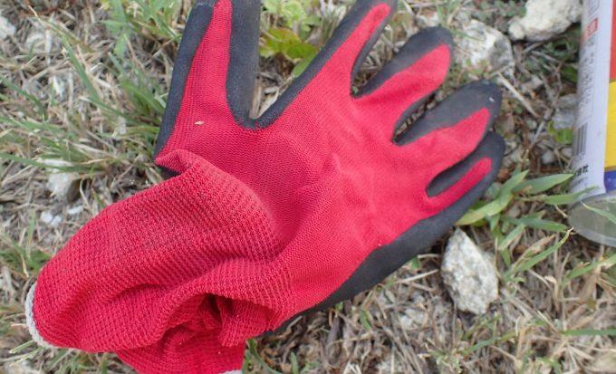 赤い手袋を着けて雑草をむしり取っていたら小さな小石が飛んできたようなパチッと音がした直後に激痛が走った