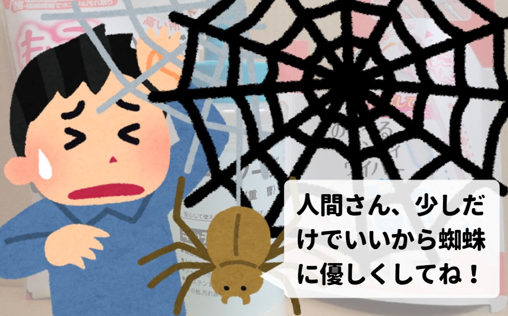 人間さん、少しでいいから蜘蛛に優しくしてね!