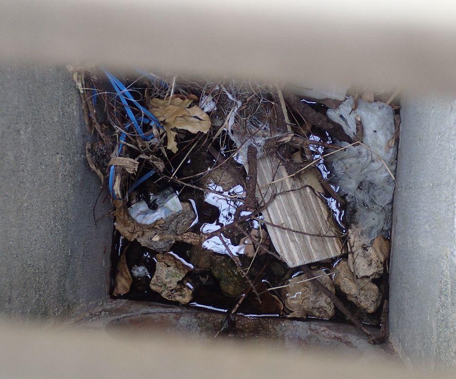 ゴミや落ち葉、枯れ葉が散乱して溜まったドブ・排水溝の内部