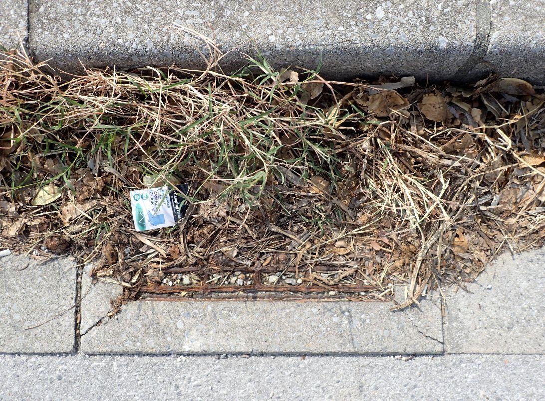 完全に穴、隙間が塞がれて雑草が生えているドブ・排水溝